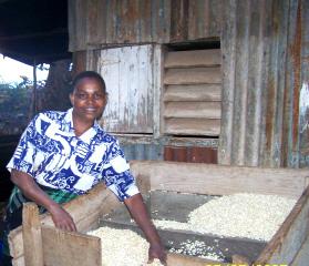 Staff member preparing maize for Getheri